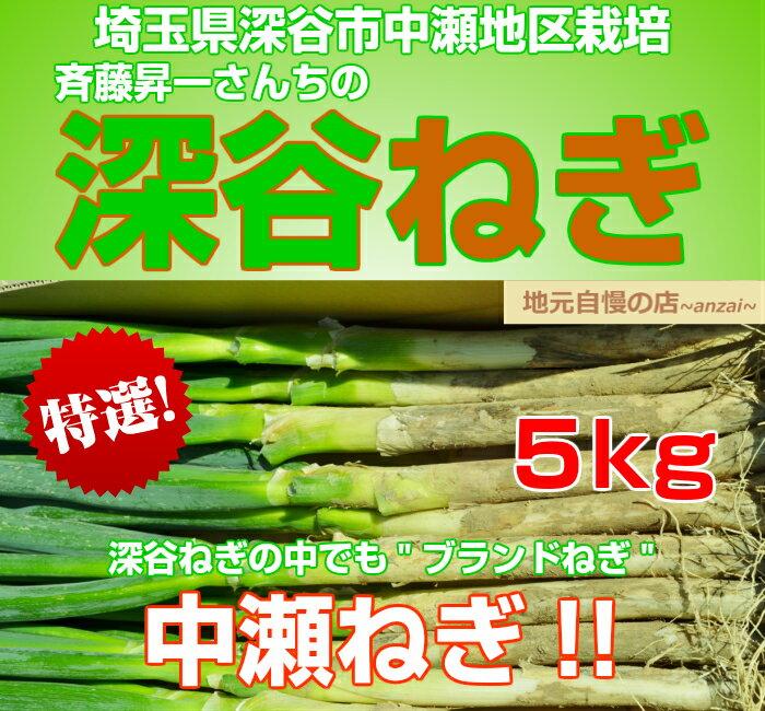 埼玉県深谷市中瀬地区栽培 深谷ネギ 5kg ふかやねぎ