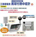 工事現場用 黒球付熱中症計 日本気象協会監修 CN5006