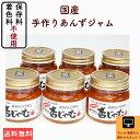 ギフト【送料無料】まるで生のあんずを食べている美味しさ!無添加・長野県産・低糖製法・低農薬栽培・あんずジャム6…