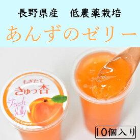 【長野県産 生あんずを使った・贅沢な杏ゼリーギフト】10個入セット 【お見舞・内祝い・引き出物・引越し・挨拶などのギフトに】
