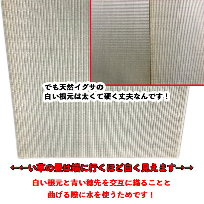 ユニット畳赤ちゃんに使って欲しい佐賀県産い草の国産たたみ通販琉球畳