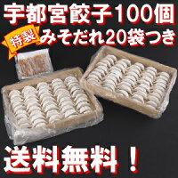 宇都宮餃子100個入り