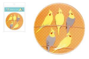 【pi】【鳥シリーズ】アクリルコースター【オカメインコ】【インコ】【トリ】【いんこ】【鳥】【鳥類】【ペット】【アニマル】【動物】【グッズ】【コースター】【コップ置き】【食器