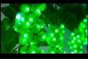 【イルミネーション】グレープガーデンライト【グリーン】【ブドウ】【ぶどう】【フルーツ】【果物】【マスカット】【…