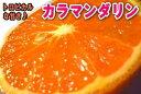 【送料込】ご家庭用 カラマンダリン5キロ【4月末頃より収穫予定】【わけあり】【訳あり】【送料無料】【お買い得】【ギフト】【オレンジ】【みかん】