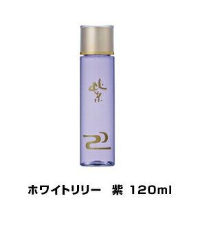ホワイトリリーWL紫(ムラサキ)