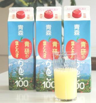『送料無料』葉とらずりんごジュース 1000g×20本