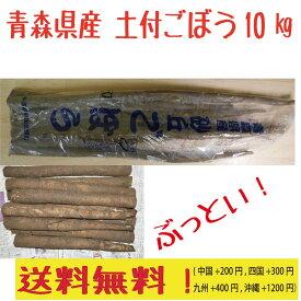 青森県産 車力 土付 砂丘ごぼう 3L 10kg  送料無料!