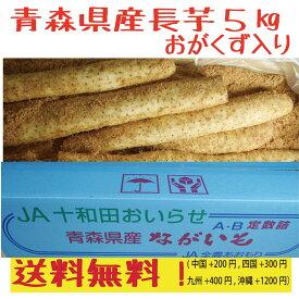 青森県産 長芋  5kg 洗浄済み おがくず入り 送料無料!