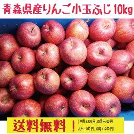 青森県産 りんご ご家庭用  ふじ 小玉 専用冷蔵庫で保管品 10kg 送料無料!