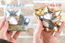【メール便選択可】エスパーニャBABYキーホルダー アンダルシア&オレンジ わちふぃーるど ダヤン 猫雑貨 本革 ダヤングッズ 猫グッズ
