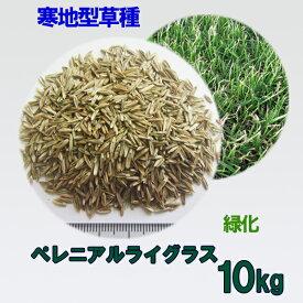 種子 ペレニアルライグラス 10kg