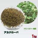 種子 アカクローバ 1kg