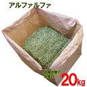 牧草 アルファルファ 圧縮 20kg 送料無料