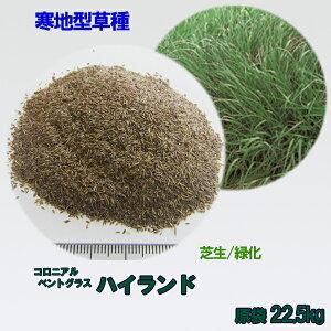 種子 コロニアルベントグラス ハイランド 22.5kg
