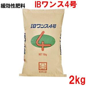 緩効性IBチッソ入肥料 IBワンス4号 2kg