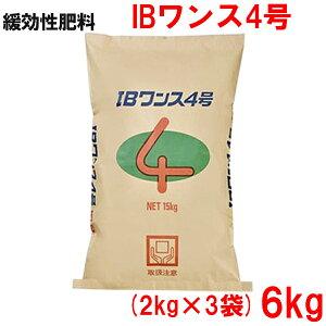 緩効性IBチッソ入肥料 IBワンス4号 6kg(2kg×3袋)