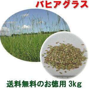 種子 バヒアグラス 3kg
