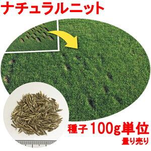 種子 ペレニアルライグラス ナチュラルニット 100g