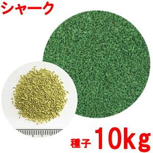 コート種子 クリーピングベントグラス シャーク 10kg