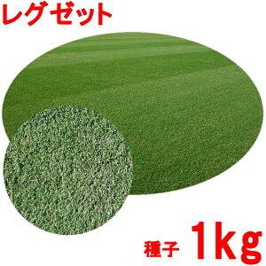 種子 ペレニアルライグラス レグゼット 1kg