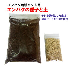 エンバク 栽培用(種子1袋・土1袋)
