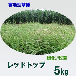 種子 レッドトップ 5kg
