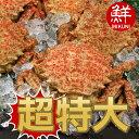 青森の春の味覚!青森産トゲクリガニ【超特大サイズ】:メス3杯