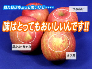 JA相馬村【家庭用・サンふじ】10kg(36-40玉)<同梱不可>】