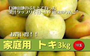 安全・安心・おいしい★JA相馬村【家庭用・トキ】3kg(10玉)