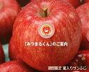 JA相馬村【みつまるくん】蜜入りサンふじ10kg(36-40玉)※同梱不可・ご用意が出来次第の発送