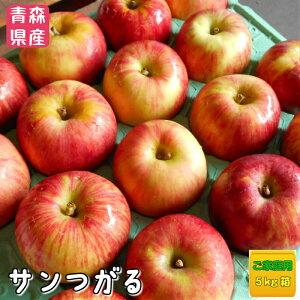 『クール便発送』青森県産りんご 本場津軽の サンつがるご家庭用 5kg箱入