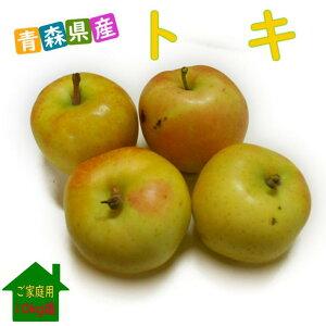 青森県産 トキ 10kg箱(28〜46玉) ご家庭用 送料無料甘さが魅力の近頃人気の品種!