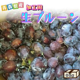 【送料無料】加工用 生プルーン 8kg 青森県産訳ありなので生食はおすすめしません