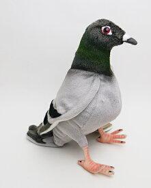【再入荷しました】ハト29cmHANSA PIGEON(送料込)鳥のぬいぐるみ【楽ギフ_包装】【楽ギフ_メッセ入力】【メッセージカード無料】【RCP】【5002014】