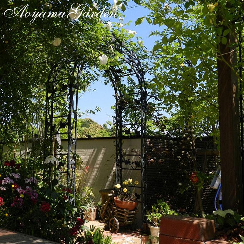 ガーデンアーチ バラ/パサディナガーデン アーチ  A-1093 /ローズ/つる/クレマチス/アイアン/アンティーク/園芸用/大型商品のため日時指定不可