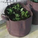 鉢 プランター 寄せ植え 菜園 ガーデニング ベランダ タカショー / フェルトプランター M /A
