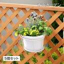 ハンギング 壁掛け 寄せ植え 菜園 タカショー / プラントホルダー シングル(大)ホワイト 5個セット /A