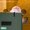 イルミネーション 屋外 サンタ LED ライト クリスマス 電飾 タカショー / 電池式 3Dクリスタルモチーフ よじのぼりサ…