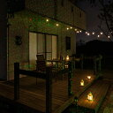 イルミネーション ガーデンライト/ローボルト ガーデンスターダストレーザーライト レッド&グリーン/LLS-01/クリスマス/ハロウィン