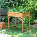 鉢 プランター ベジトラグ 菜園 スタンド 木製 タカショー / レイズドベッドプランター ハーブタイプ ナチュラル グレイウォッシュ /A
