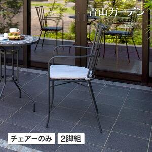 イス チェア 椅子 屋外 家具 ファニチャー スチール スタイリッシュ ガーデン タカショー / テイラーアームチェアー 2脚組 クッション付 /C
