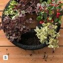 ハンギング リース 鉢 プランター 寄せ植え ガーデニング タカショー / フェルト ハンギングリース S /A