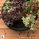 ハンギング リース 鉢 プランター 寄せ植え ガーデニング タカショー / フェルト ハンギングリース L /A
