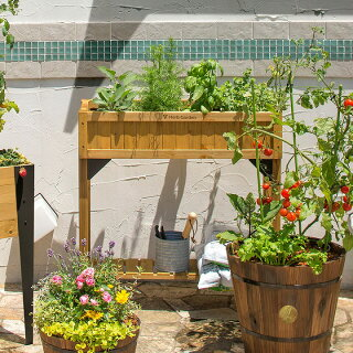 鉢プランターベジトラグ菜園スタンド木製ガーデニングタカショー/レイズドベッドハーブプランタースリムナチュラルグレイウォッシュ/A