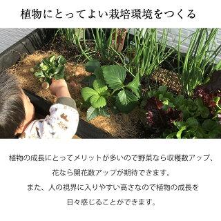 鉢プランターベジトラグ菜園スタンド木製ガーデニングタカショー/ホームベジトラグウォールハガーSナチュラルグレイウォッシュ/B