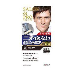 【医薬部外品】《ダリヤ》 サロンドプロ 無香料ヘアカラー メンズスピーディー 《6 自然な黒褐色》 白髪用