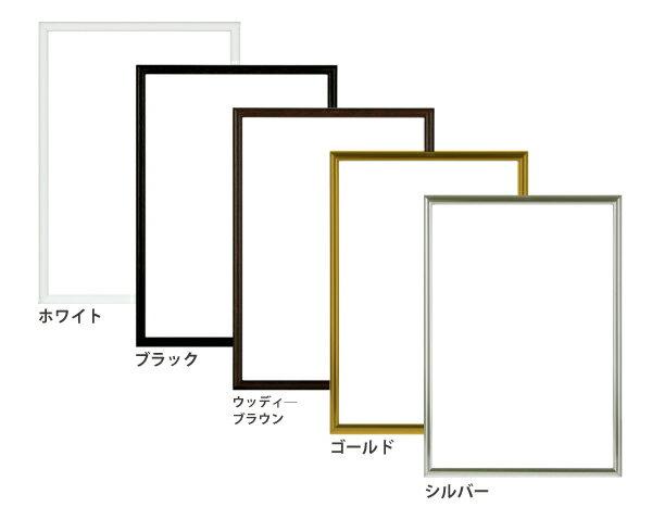 アルミパネル・アルミフレーム・額/NEWライトフレーム B2サイズ(515×728mm)