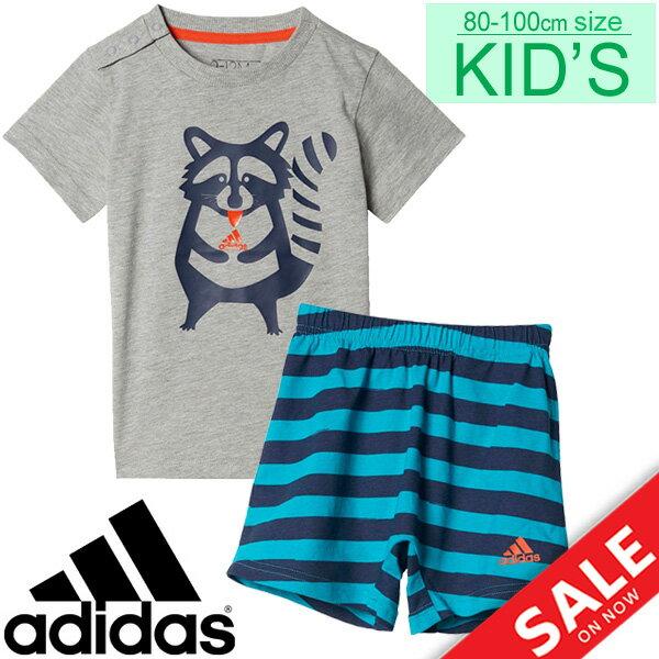 ベビー Tシャツ パンツ 上下セット キッズ 子供服 男の子 女の子/アディダス adidas かわいい あらいぐま アニマル 80cm 90cm 100cm ベビー服 インファント/MLS10