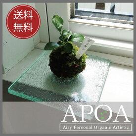 APOA送料無料四角いバリガラスとこけ玉のセット プレゼント おしゃれなプレゼント